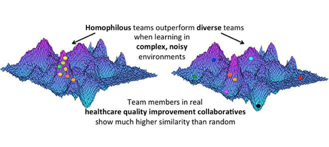 Team learning in complex, noisy environments.