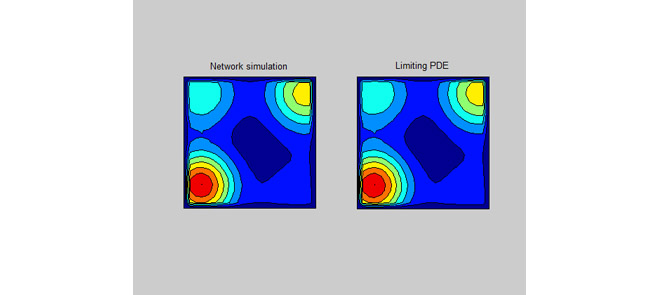 Comparison of network simulation and the PDE solution as its continuum limit.